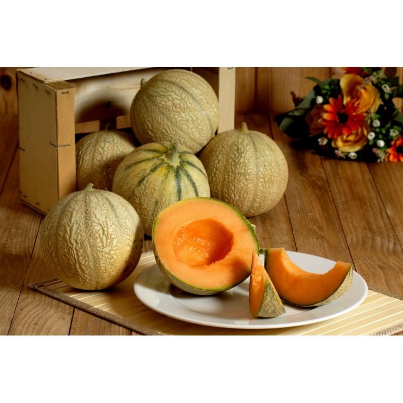 Melon charentais environ 800gr (à la pièce)
