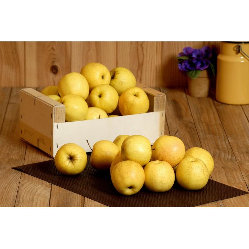 Pomme Golden delicious (kg)