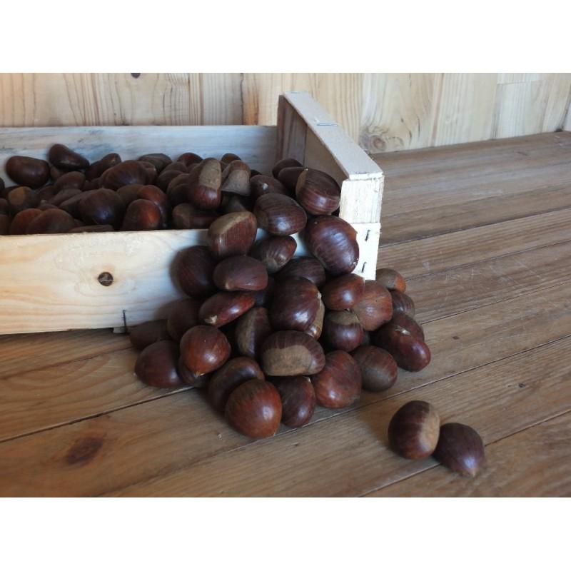 Châtaigne ( 500 grs)