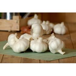 Ail blanc frais cal 40-60  ( 250 gr)